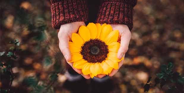 Como Amarrar A Un Hombre Con Flores